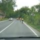2011_06_26_bicykle_069